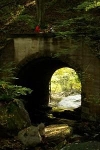 Blackwater Canyon Bike Ride @ Thomas, WV | Thomas | West Virginia | United States